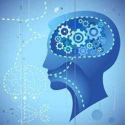 reprogramming brain