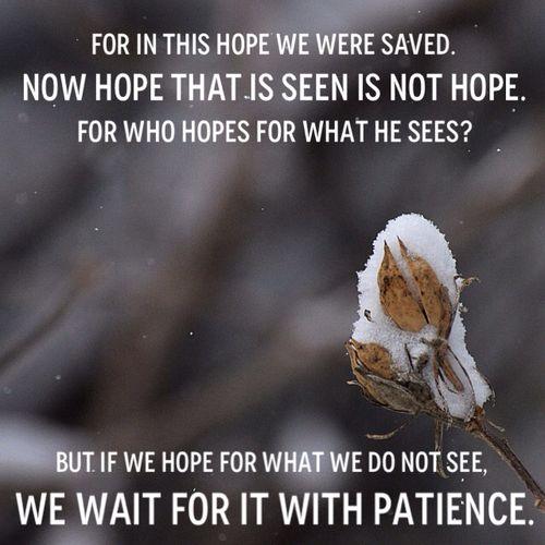 Romans 8_24-25